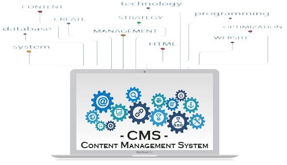 cosa è un content management system